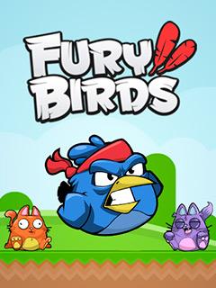 Fury Birds