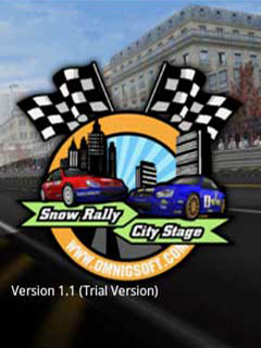 3D Snow Rally City Stage